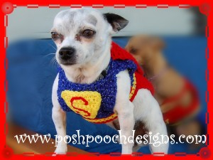 Posh Pooch Designs (7)